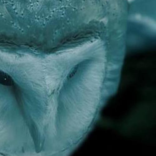 Within Temptation Official Music Video - Mother Earth